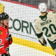 Record Night for Mayhew Leads Wild Past IceHogs